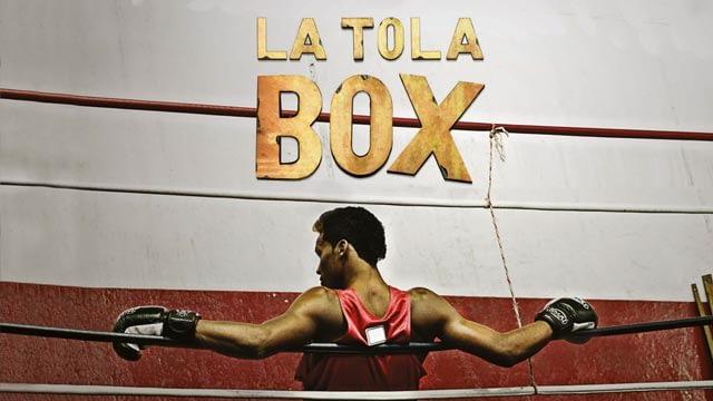 La Tola Box